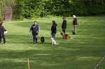 1. Obedience-Prüfung am 10.05.2014