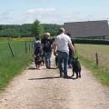 Wander-/ Vatertag am 25.05.2017